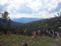 The view from Burnt Hut Spur